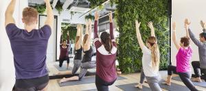health & wellness services